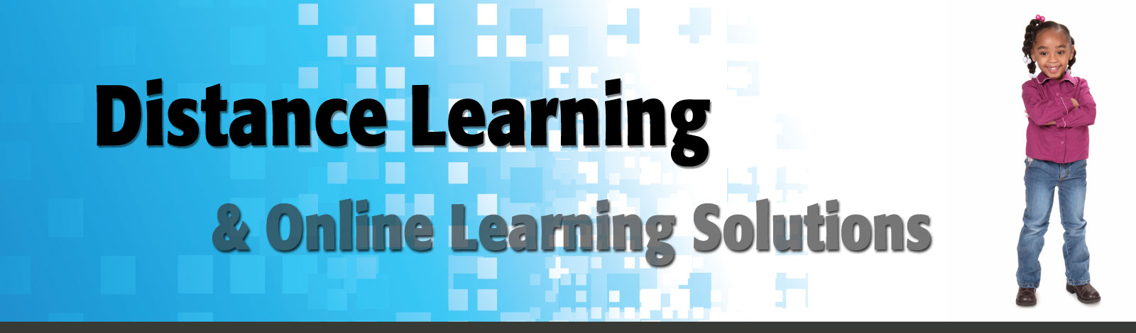Distance Learning & Online Curriculum