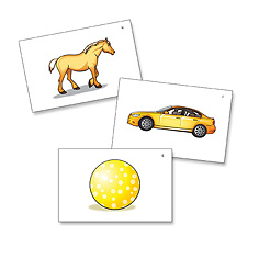 Edmark Reading Program: Level 1 Second Edition Picture Match Cards   Special Education