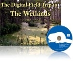 The Digital Field Trip to The Wetlands 1.5 | Science