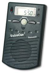 VoiceCue